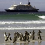 Falkland Islands Wildlife Cruise book by 30th June